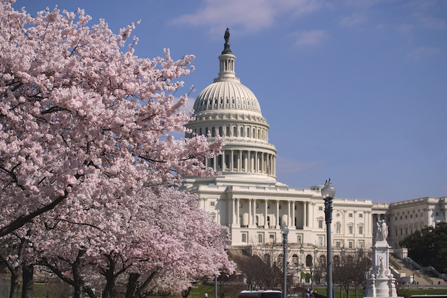 Bolster Your Emergency Preparedness Efforts with Security Guards in Washington, D.C.