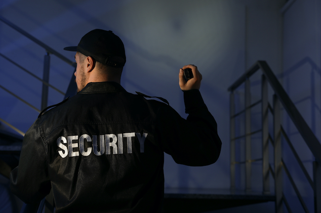Get Ready For The Holiday Season With Security Services From CES Security
